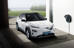 Hyundai, LG Energy agree to split EV recall costs, reflect in Q4 results
